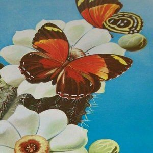 1969 Ralph Coventry Butterfly Print 16364